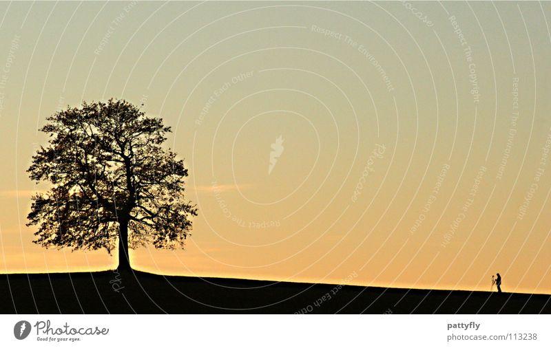 Zwei Dumme ein Gedanke... Mensch Himmel Baum Sonne Stimmung Fotograf Himmelskörper & Weltall