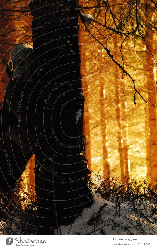 man in mask massiv mysteriously dark forest next to a black tree breath sun