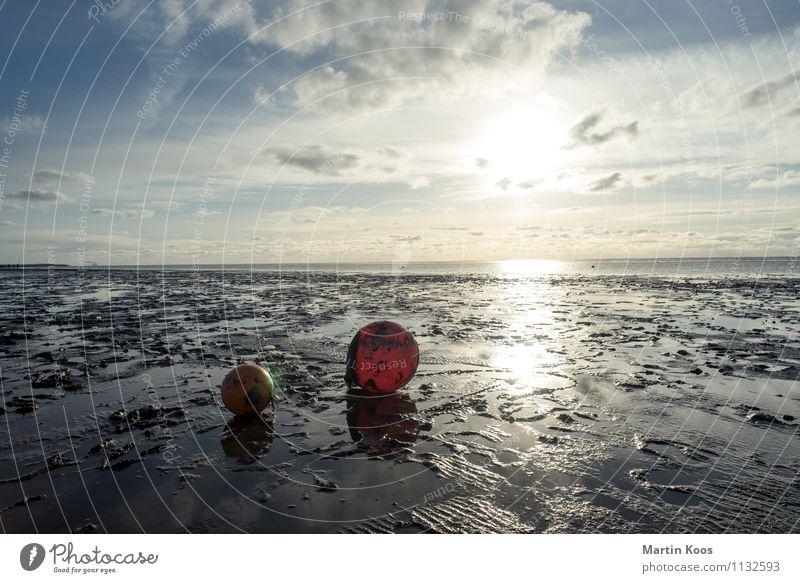 Niedrigwasser Natur rot Landschaft Ferne Strand Umwelt Wege & Pfade Küste Freiheit Horizont orange Freizeit & Hobby Tourismus Perspektive Klima weich