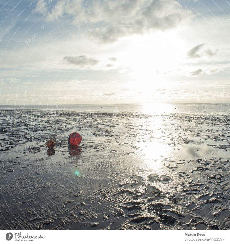 So Watt Umwelt Natur Landschaft Urelemente Erde Sand Klima Wetter Küste Nordsee Wattenmeer Wattwandern Boje maritim weich orange rot Horizont Wege & Pfade