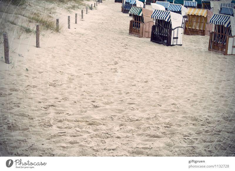rudelbildung Freude Glück Freizeit & Hobby Ferien & Urlaub & Reisen Tourismus Ausflug Umwelt Urelemente Sand Gras Küste Strand Erholung Zufriedenheit