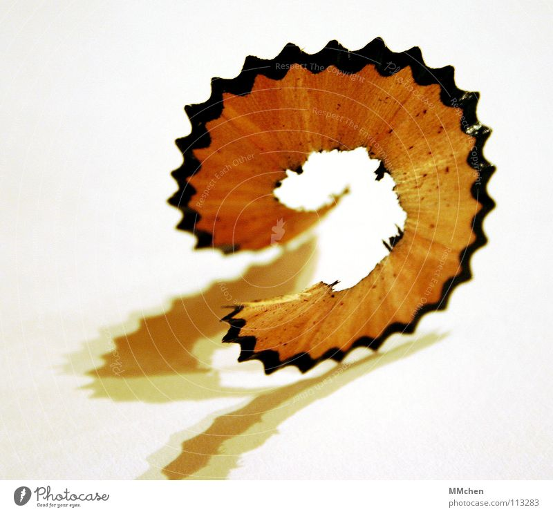 Halbwertzeit überschritten Schreibstift Farbstift Spitze Anspitzer gespitzt Holz Rest Müll Krümel schwarz weiß zerbrechlich Makroaufnahme Nahaufnahme Pencil