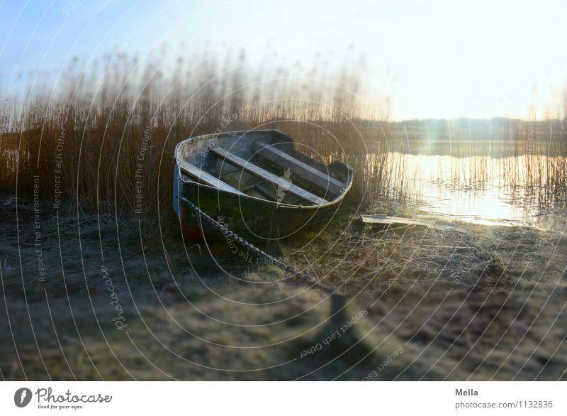 Still ruht der See Angeln Ferien & Urlaub & Reisen Ausflug Umwelt Natur Landschaft Sonnenlicht Winter Gras Schilfrohr Seeufer Teich Bootsfahrt Fischerboot