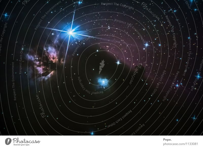 Pferdekopfnebel Himmel Nachthimmel Stern Frühling glänzend gigantisch Glück positiv blau Zufriedenheit einzigartig Inspiration Nebel Sternenhimmel Weltall