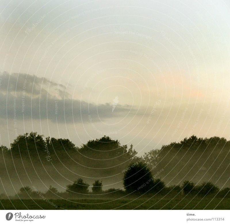 Schläft ein Lied in allen Dingen... Umwelt Natur Landschaft Luft Wolken Horizont Schönes Wetter Nebel Baum Sträucher Wiese Feld Wald schön Sehnsucht Heimweh