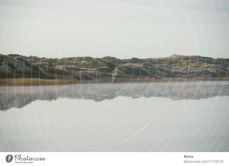 Morgensee Umwelt Natur Landschaft Urelemente Wasser Himmel Seeufer Teich Düne kalt natürlich Stimmung Einsamkeit Erholung Idylle ruhig ruhend Dunst Nebeldecke