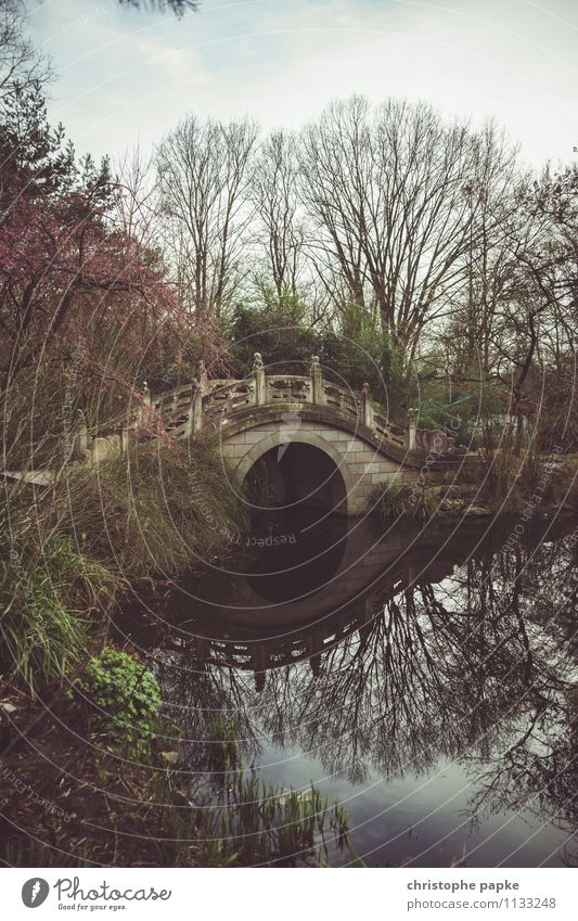 Bridge over silent water Ferien & Urlaub & Reisen Ausflug Ferne Frühling Garten Park Teich Brücke Bauwerk Erholung exotisch historisch Asiatische Architektur