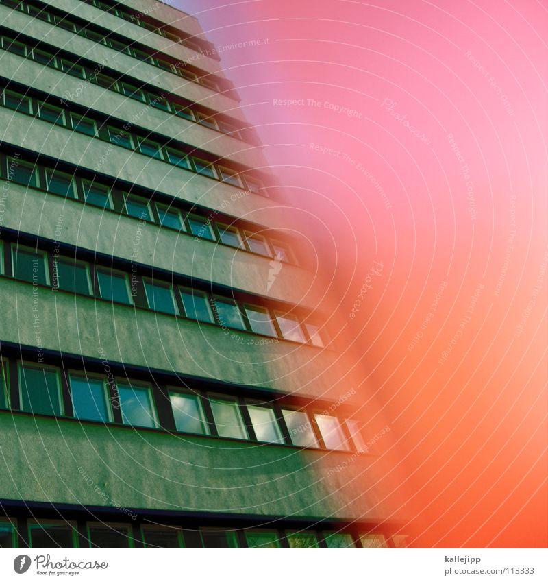 plattdeutsch Stadt Pflanze Blume Haus Farbe Wand Fenster Architektur Lampe Beleuchtung Raum rosa leer Ecke Häusliches Leben Bauernhof