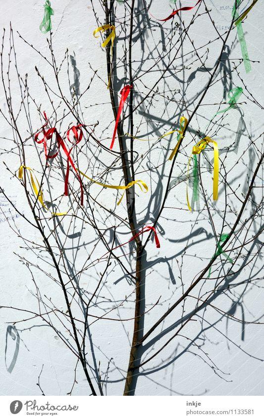 ab in den Frühling ! II Lifestyle Freude Freizeit & Hobby Entertainment Party Veranstaltung Feste & Feiern Ostern Baum Ast Zweig Dekoration & Verzierung
