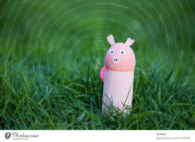 Oster Sau lustig Dekoration & Verzierung Ostern Ei Basteln Vegetarische Ernährung Schwein Vegane Ernährung Osternest