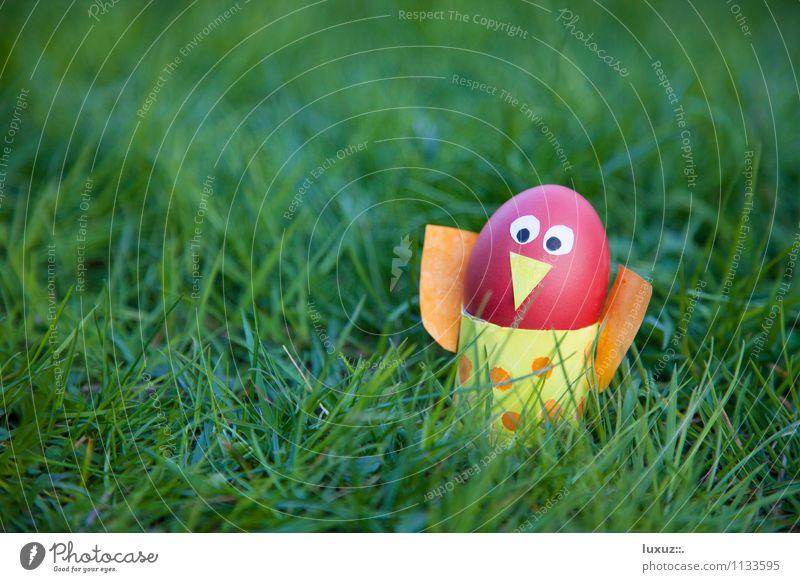 Oster Vogel Freude Frühling Dekoration & Verzierung Idee Rasen