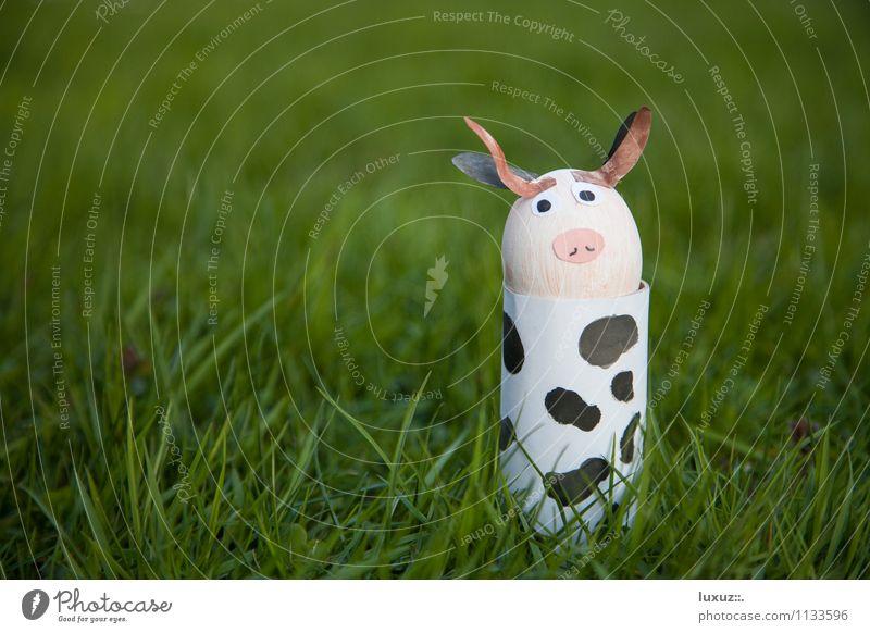 Oster Kuh lustig verrückt niedlich Coolness Ostern positiv Osternest
