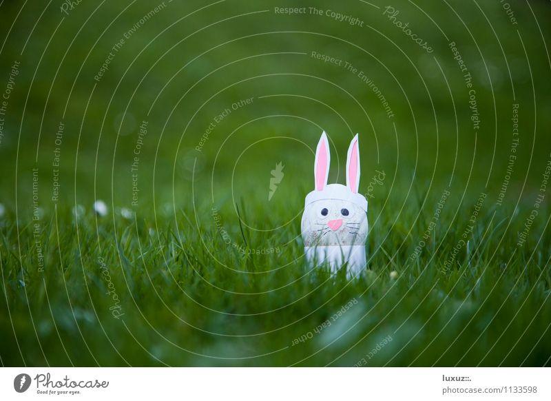 Osterhase Ostern Garten Wiese lustig Hase & Kaninchen Ohr Ei Osterei Rabbit Karfreitag Basteln Dekoration & Verzierung Textfreiraum links Hintergrund neutral