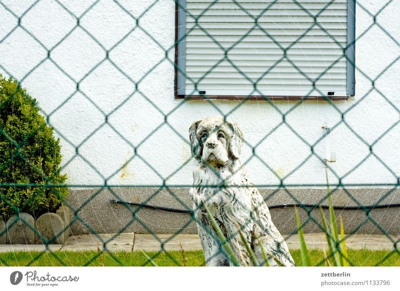 Hund Garten Schrebergarten Vorgarten Zaun Maschendrahtzaun Haus Gartenhaus Fenster geschlossen Rollo Jalousie Haushund Skulptur Stein Wohnhaus Tiefenschärfe
