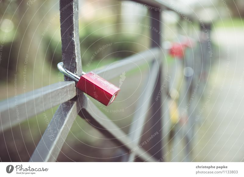 Die Fesseln der Liebe Lifestyle Valentinstag Park Wege & Pfade Brücke Metall Schloss hängen Glück Einigkeit Zusammensein Verliebtheit Treue Romantik