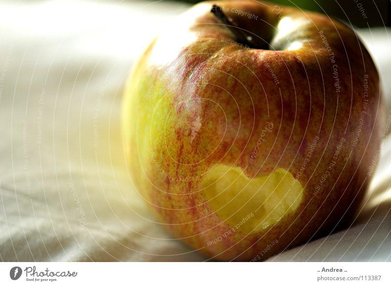 Herzschmerz Frucht Apfel Liebe gelb rot weiß Sehnsucht Apfelbaum Farbfoto