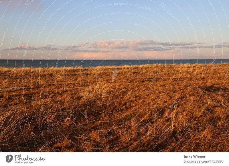 Abendstimmung auf dem Darß Himmel Natur Ferien & Urlaub & Reisen blau Wasser Meer Landschaft ruhig Wolken Frühling Freiheit rosa Horizont träumen orange