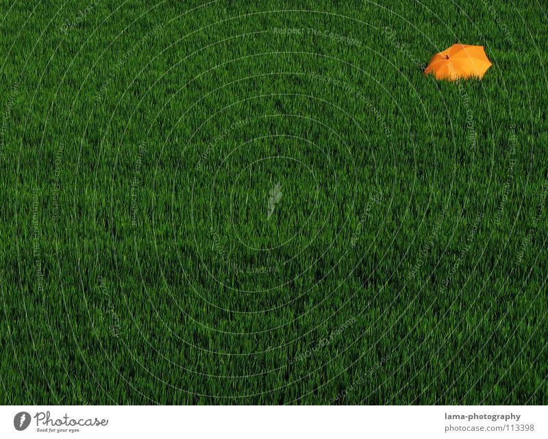 Orange Dot Cloppenburg Regenschirm Sonnenschirm Unwetter Wolken Gras Halm Wiese Sommer Feld grün Frühling ruhig Einsamkeit Erholung Sonnenbad vergessen