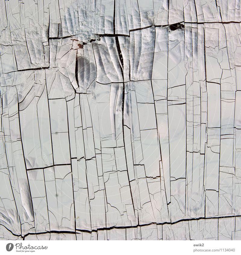 LAN alt Kunst trist verrückt Vergänglichkeit Wandel & Veränderung trocken nah Krankheit Verfall Riss bizarr Zerstörung abblättern Kunstwerk dehydrieren
