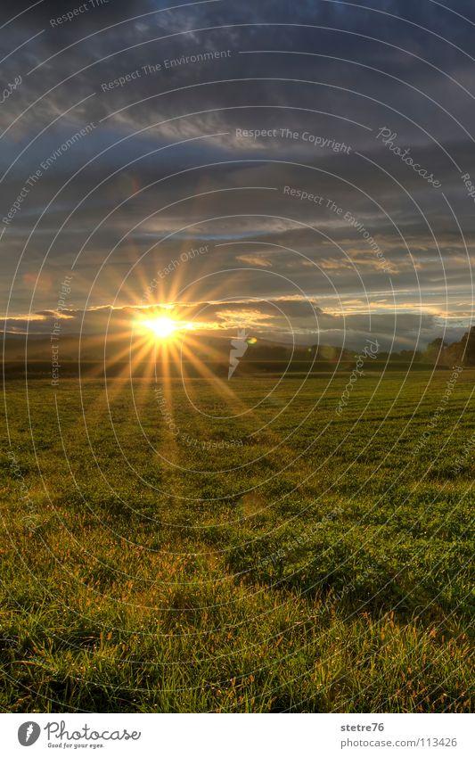 goldener Sonnenuntergang Himmel grün Wolken Erholung Wiese Landschaft Stimmung Feld Landwirtschaft Österreich
