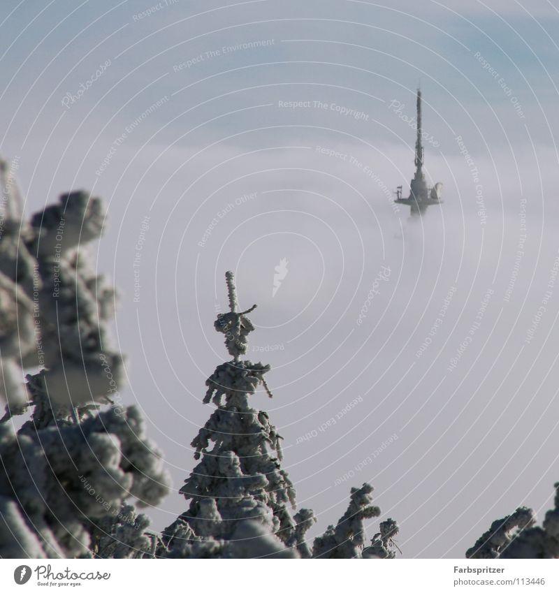 Skycity Himmel blau weiß Winter Wolken Wald kalt Schnee Freiheit träumen Aussicht Schweben Antenne Sachsen Funkturm über den Wolken