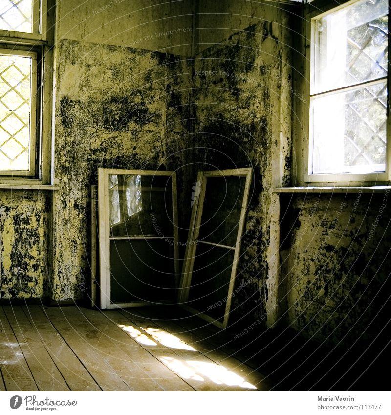 Eckfenster mit Glasecke (auch Fenstereck genannt) Aussicht Verfall Haus Gebäude Demontage Raum Holz Ruine verfallen dunkel Fensterrahmen lüften Windzug Gitter