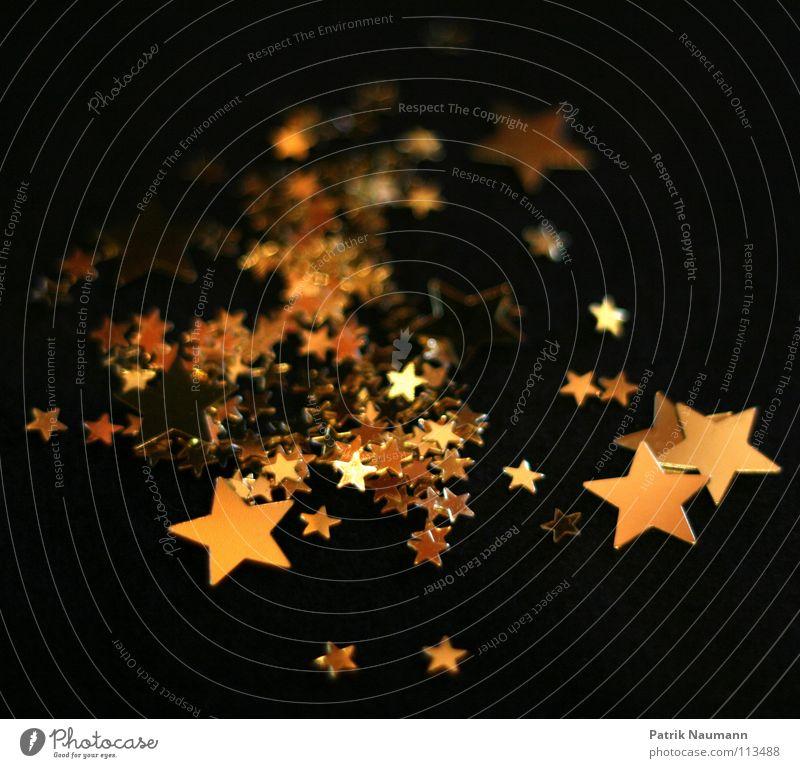 Weihnachtssternchen Winter Dekoration & Verzierung Weihnachten & Advent Schmuck leuchten liegen groß hell klein gelb gold schwarz Stern (Symbol) Beleuchtung