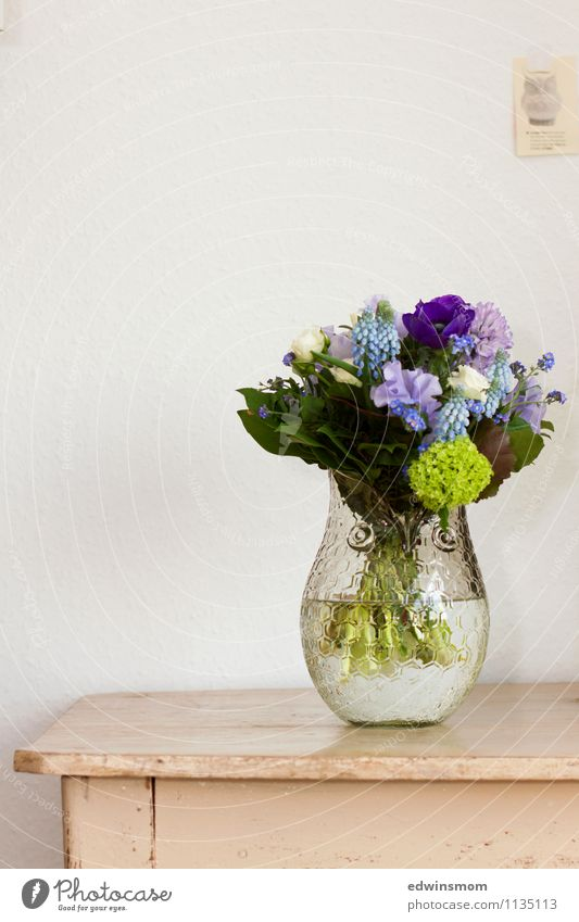 Geburtstagsgeschenk Pflanze Frühling Blume Blatt Blüte Dekoration & Verzierung Blumenstrauß Kitsch Krimskrams Vase Blühend Duft stehen elegant einzigartig