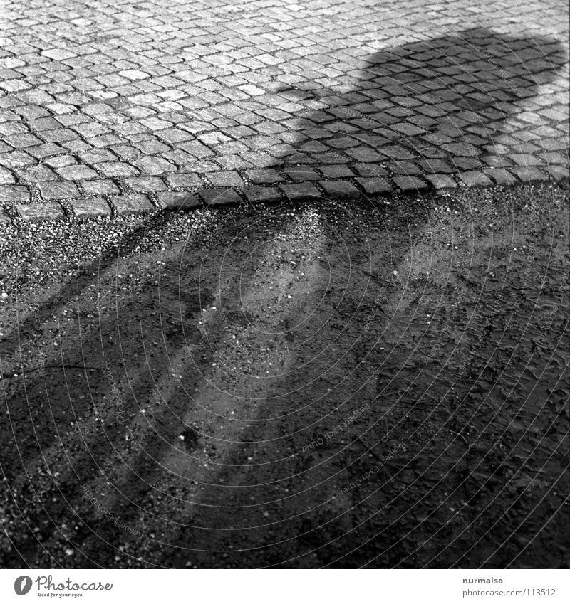 Bikegnom Fahrrad Fahrer neutral Pfütze Platz Halt stoppen Geschwindigkeit Katzenkopf Stadt Verkehrswege Freude Schatten Bodenbelag angehalten gesehen einfach