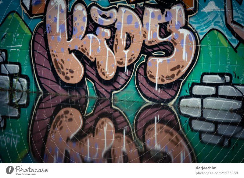 Spiegelung Farbe Sommer Wasser Erholung Freude Wand Mauer Kunst Park Freizeit & Hobby Design Fröhlichkeit Schriftzeichen Lächeln Beton genießen