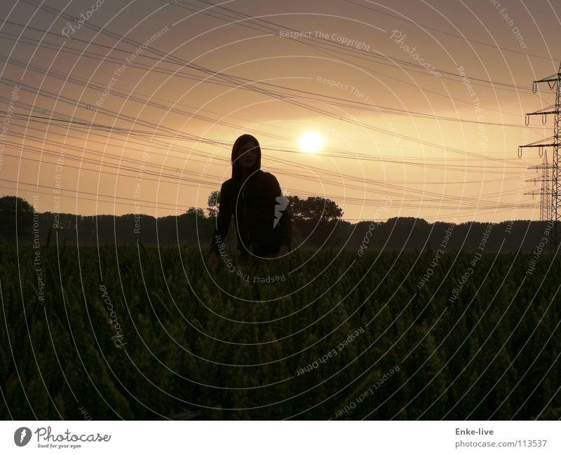 Abendstimmung Abenddämmerung Sonnenuntergang Feld Kornfeld Frau Einsamkeit Elektrizität Strommast Horizont schwarz Baum Sträucher Wolken Sommer Verkehr Getreide