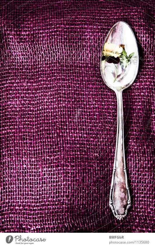 Wo bleibt das Essen? schön Farbe Blume Lifestyle glänzend Dekoration & Verzierung elegant ästhetisch Beginn Ernährung genießen Armut Küche violett Beruf