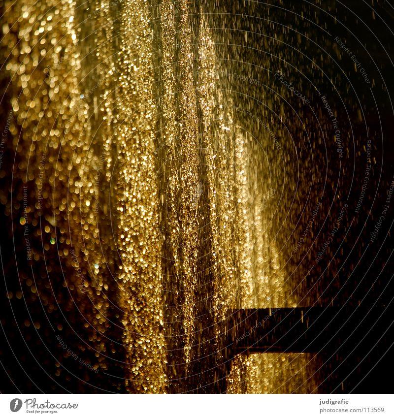Goldregen Salzwerk Licht sprühen nass Saline Schwarzdorn Kur Abendsonne glänzend Silvester u. Neujahr Gesundheit Farbe schön Wasser Wassertropfen gold Regen