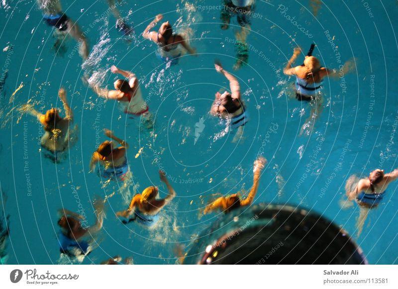 Schwimm Dein Ding Wasser blau Freude kalt Menschengruppe orange Arme nass Schleswig-Holstein Schwimmen & Baden Aktion Schwimmbad einzigartig Wildtier tief Leichtigkeit