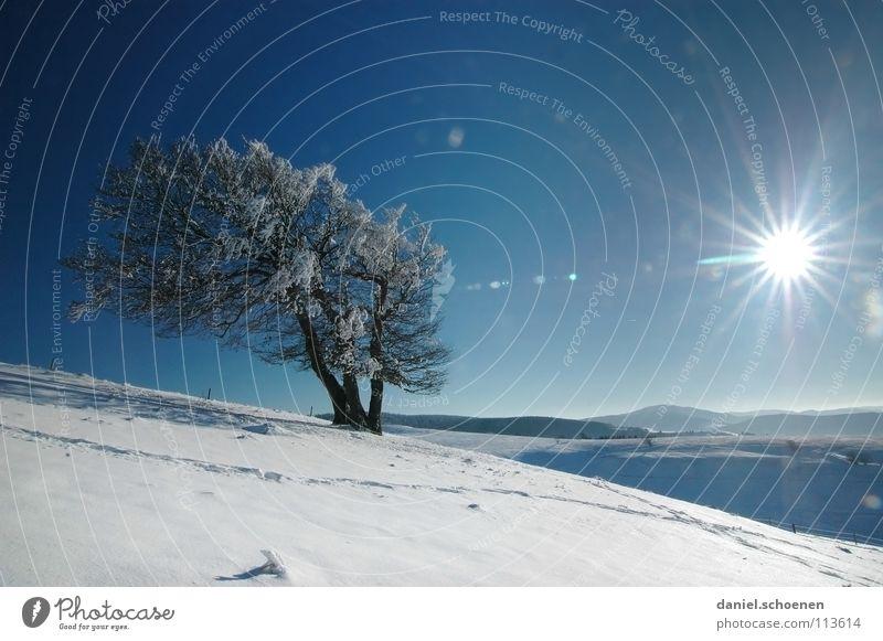 Weihnachtskarte 15 Himmel Natur Ferien & Urlaub & Reisen blau weiß Baum Sonne Einsamkeit Winter Berge u. Gebirge kalt Schnee Hintergrundbild Deutschland
