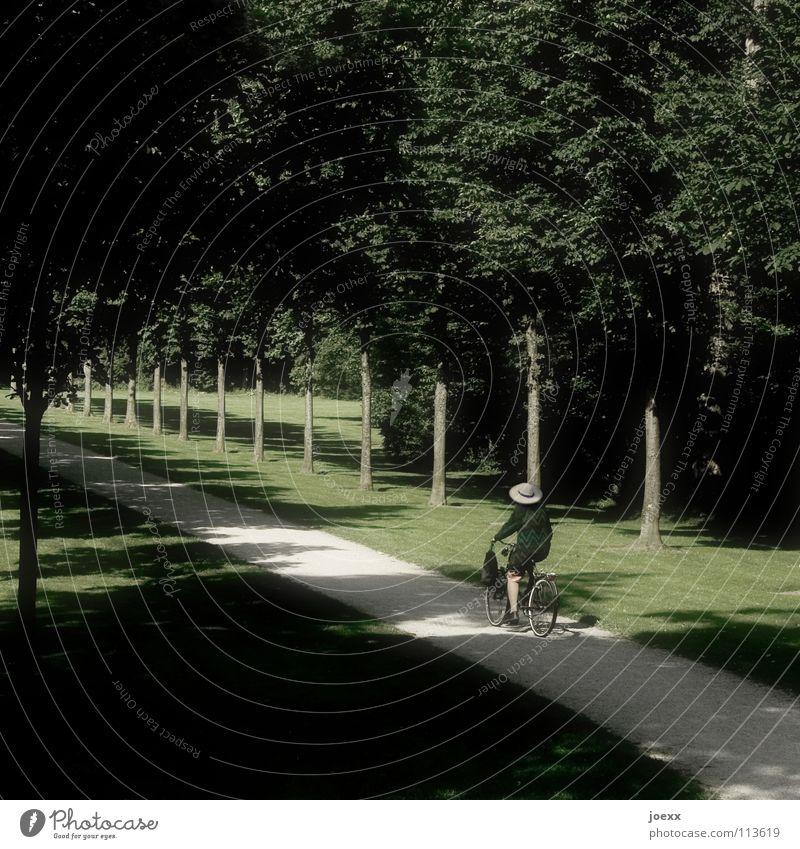 Zum nächsten Ort … Frau Ferien & Urlaub & Reisen Baum Senior Frühling Wege & Pfade Stein Garten Park Fahrrad fahren Trauer Rasen Ende Hut Fahrradfahren