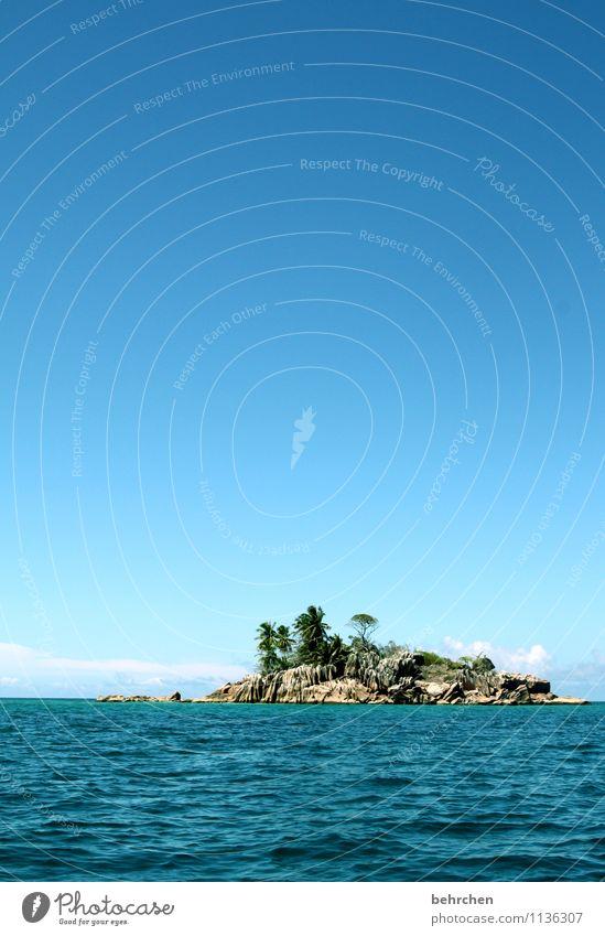 nie vergessene tage Ferien & Urlaub & Reisen Tourismus Ausflug Abenteuer Ferne Freiheit Sommer Strand Meer Insel Wellen Seychellen Saint-Pierre Landschaft