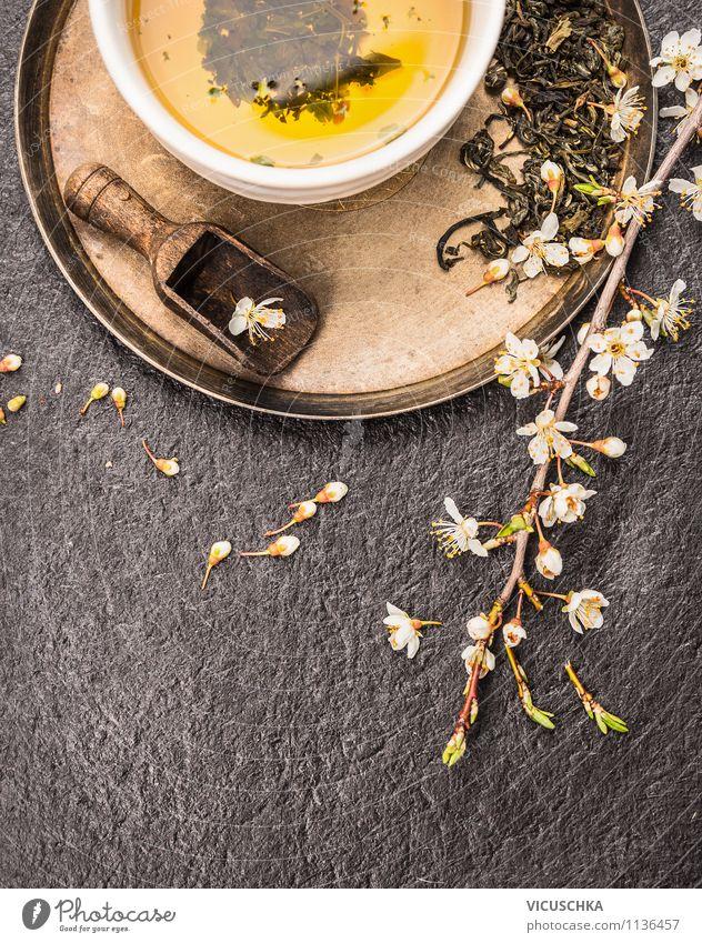 Grüner Tee mit Kirschblüten Natur Pflanze grün Sommer Gesunde Ernährung Leben Frühling Stil Hintergrundbild Lifestyle Garten Lebensmittel Design Tisch Getränk heiß
