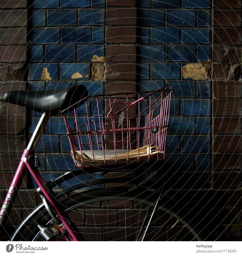 die zeitungsbotin grün Lampe Gras Bewegung Mauer Fahrrad Straßenverkehr Verkehr Güterverkehr & Logistik Zeitung Student Bauernhof Werbung verfallen Rad Stahl