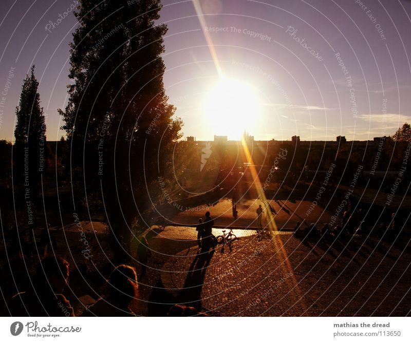 EINER DER LETZTEN HERBSTTAGE I Mensch Natur Himmel Baum Erholung Herbst Garten Park Wärme sitzen Physik Schönes Wetter Anhäufung