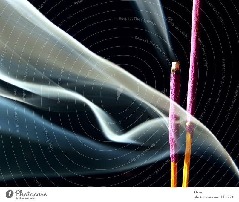 Rauchende Räucherstäbchen vor schwarzem Hintergrund brennen Rauchfahnen Nebel Tibet Tempel Buddhismus Feng Shui beruhigend Krimskrams Spiritualität glühen Asien