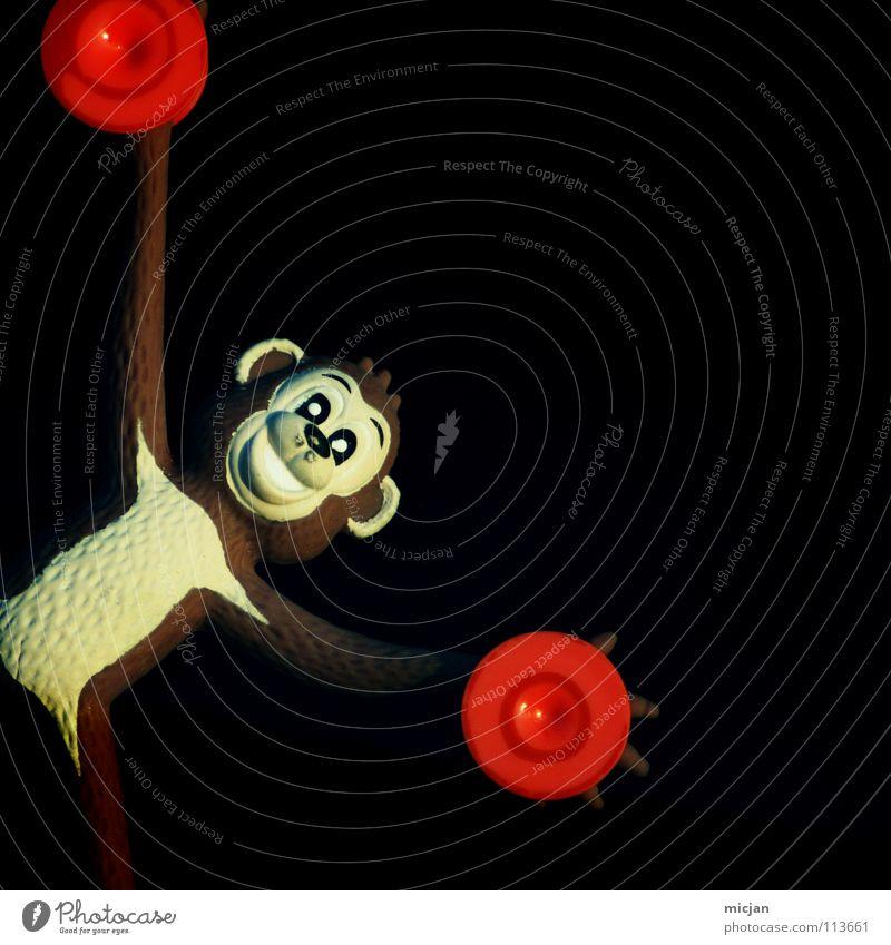 Happy Affen Äffchen Tier Fenster Fell Spielzeug Dekoration & Verzierung Fröhlichkeit dunkel schwarz braun rot Kreis plopp festhalten kleben Freude Säugetier ape
