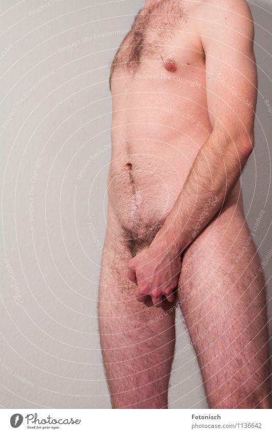 ergreifend Mensch maskulin Junger Mann Jugendliche Körper Brust Hand Bauch Beine Oberkörper Schambereich 1 18-30 Jahre Erwachsene Brustbehaarung Schamhaare