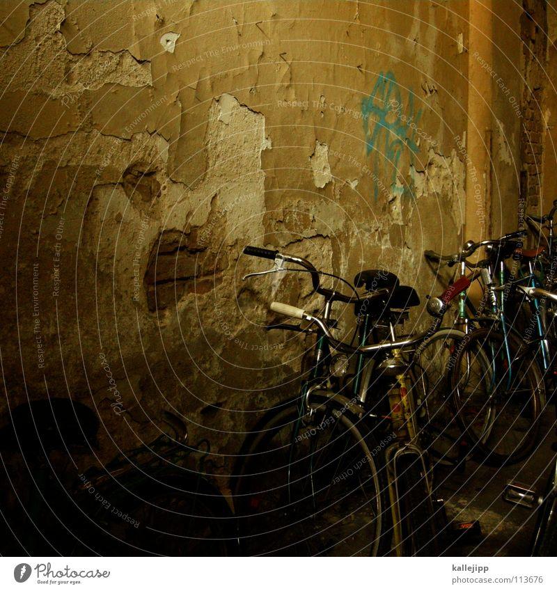 fahrradlicht grün Gras Bewegung Mauer Lampe Fahrrad Verkehr Güterverkehr & Logistik Student Bauernhof Stahl Rad ökologisch Sitzgelegenheit Mantel Gitter
