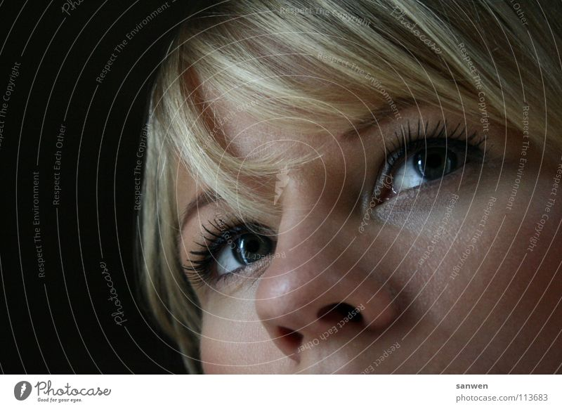 hübsches pony ;o) Frau Mensch Auge dunkel Haare & Frisuren Denken blond Beleuchtung Nase Pony Anschnitt strahlend Vor dunklem Hintergrund