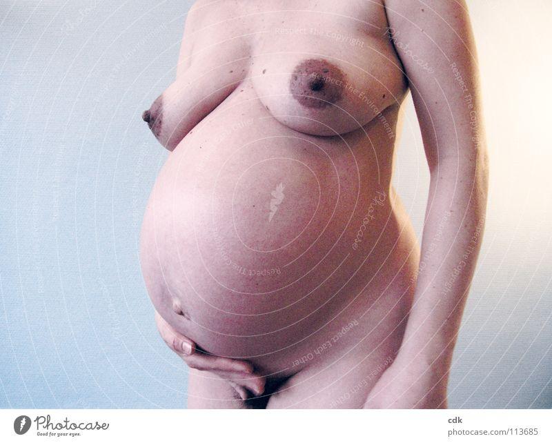 schwanger III Frau Mensch Akt Natur Hand blau schön Freude Liebe Farbe Leben feminin nackt Glück Familie & Verwandtschaft Gesundheit