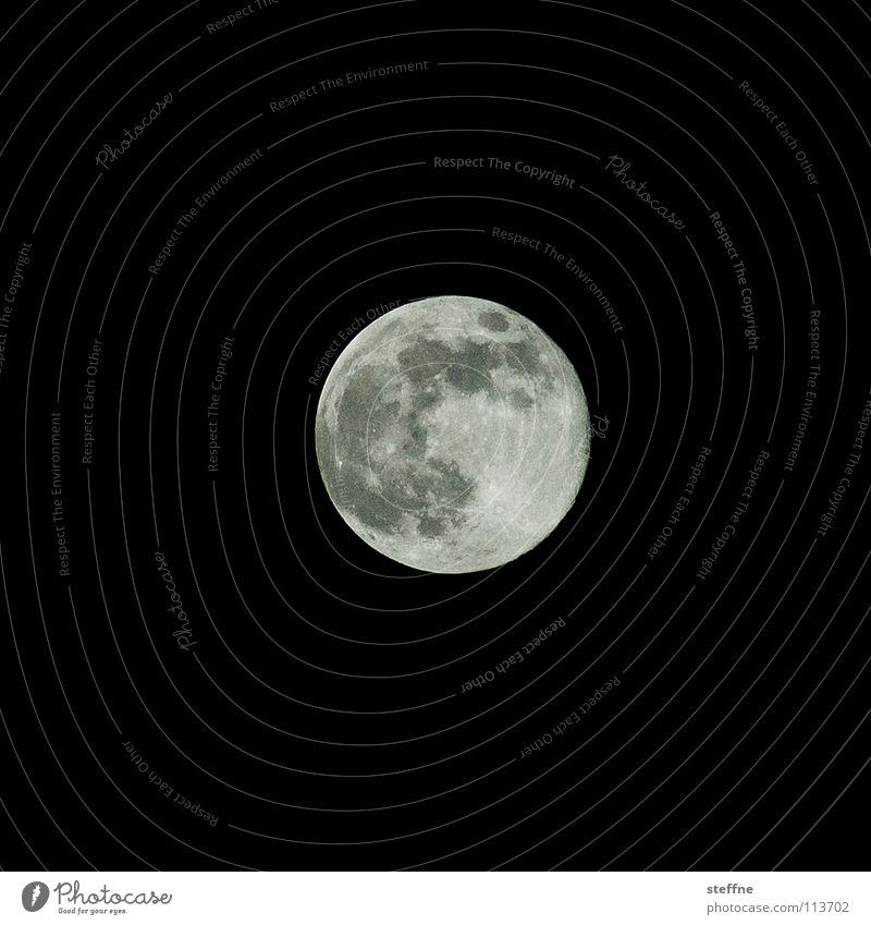 Plattencover Mondschein Vollmond Beleuchtung Werwolf Wolf Hund Oberfläche Mondsüchtig Observatorium Tierkreiszeichen mystisch Gezeiten Ebbe Planet NASA Satellit