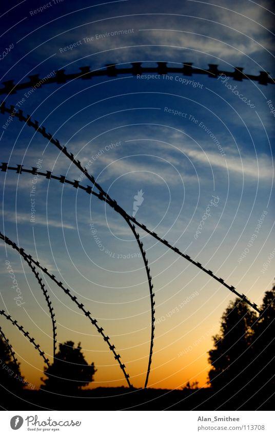 protect your property Sonnenuntergang Himmel Sicherheit barbwire barbed wire razor wire clouds sundown sky Silhouette