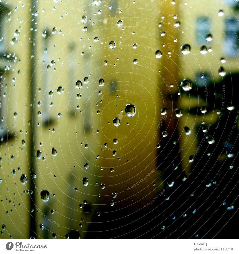 draußen - verregnet Baum Haus gelb Fenster Herbst Regen Wohnung Fassade Wassertropfen Häusliches Leben Bauernhof aufwärts Etage Hinterhof Miete schlechtes Wetter