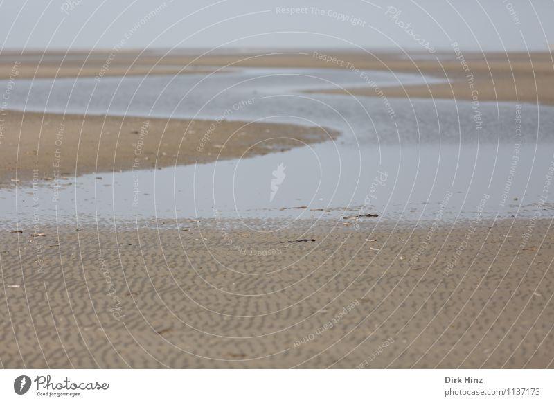 Watt-S Umwelt Natur Landschaft Urelemente Erde Sand Wasser Horizont Klima Küste Strand Nordsee Meer maritim Wattenmeer Priel Ebbe Wattwandern Schleswig-Holstein